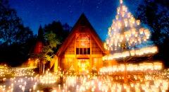 星野梦缘,独一无二的教堂里接受神圣的祝福