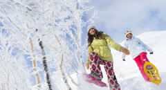 Winter Travel in Japan! What Japanese wintry excitement is waiting for you?