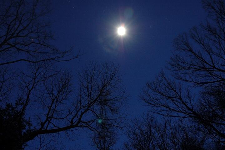 【星のや軽井沢】森の月