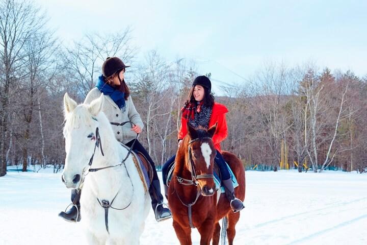 hoshinoya karuizawa winter hourse
