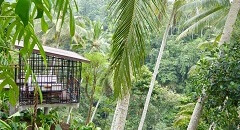 A resort village of aquatic bliss HOSHINOYA Bali
