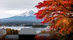 日本的秋季之旅