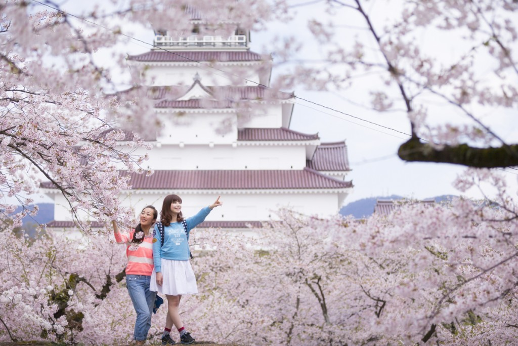 会津磐梯桜ハンティング1