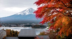 Recommended Breathtaking Autumn Journeys in Japan