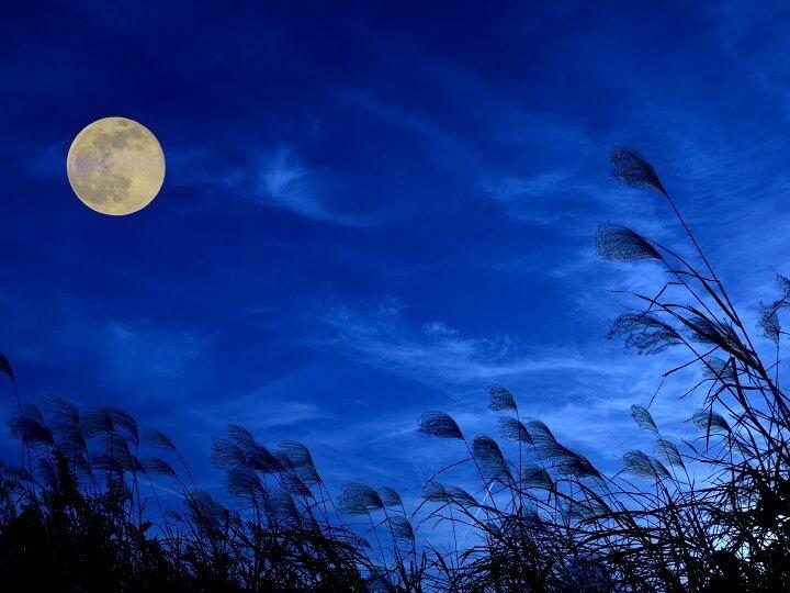 【界阿蘇】お月見イメージ