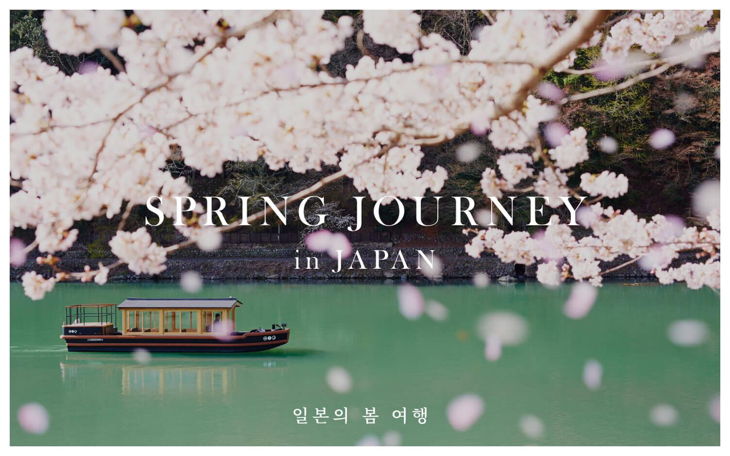 일본의 봄 여행